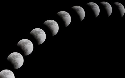 Moon Cycles and Manifestation: Guest Blog Post by Michelle Peticolas Ph.D.